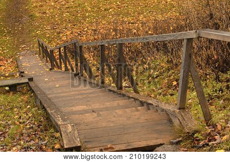 Autumn wooden staircase with fallen maple leaves in the countryside