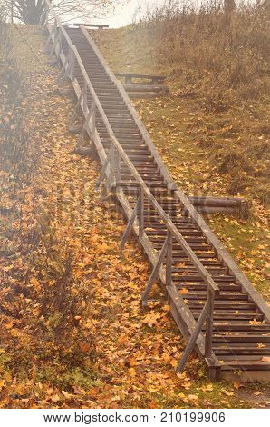 Autumn wooden staircase with fallen maple leaves and the oncoming light of the sun in the countryside