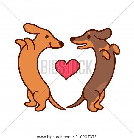 Cute cartoon dachshunds in love adorable wiener dogs looking at each other in heart shape. St. Valentines day greeting card vector illustration.