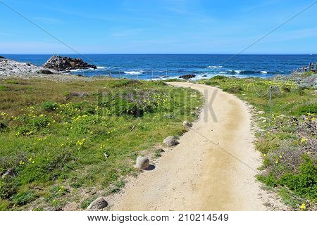 Walkway to the bluffs at Asilomar State Beach on the Monterey Peninsula in Pacific Grove California