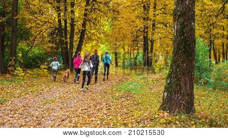 The dog is running with the teenagers. Running athletes park on a run early morning. Several children are running woods doing sports. Healthy lifestyle.