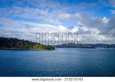 Wellington City View From The Sea, New Zealand
