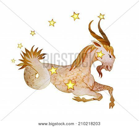 Astrological sign of the zodiac Capricorn isolated on a white background