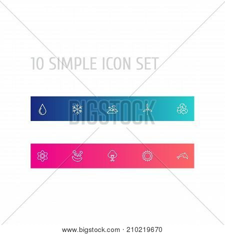 Collection Of Recycle, Wood, Flower And Other Elements.  Set Of 10 Bio Outline Icons Set.