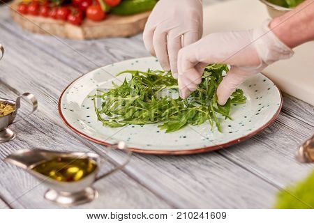 Chef hands and arugula on plate. Chef making an appetizer from arugula. Chef at work, kitchen.