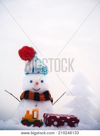 Winter Holidays Celebration Concept