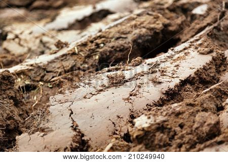 Brown mud in a field that has been plowed with slabs of mud and plant roots with selective focus and space for text.