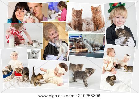 Collage with three adult people and five children with cats and kittens on hands, in embrace