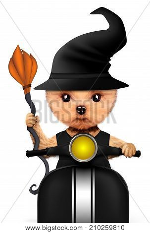 Funny cartoon animal witch sit on a bike. Halloween and Dead day concept. Realistic 3D illustration.