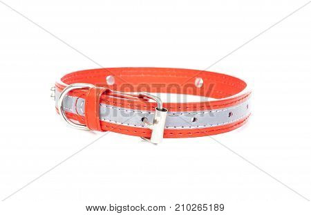 Reflective dog collar to avoid accidents. Dog collar on isolated white background.