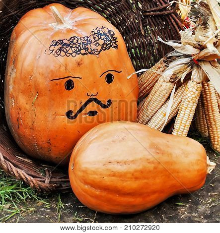 Autumn pumpkin vegetables in basket background royalty free photostock photos