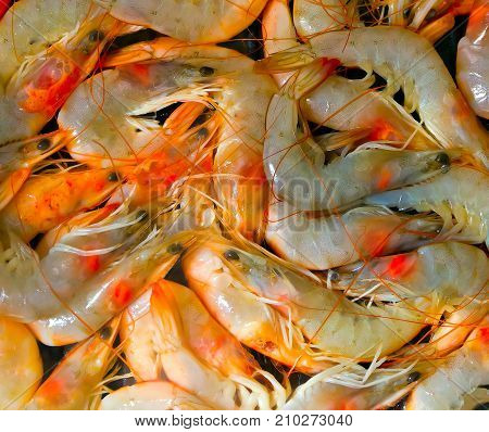 seafood cooked unshelled tiger shrimps background royalty free photostock photos