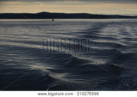 Gentle wake from a distant boat in the early morning on Puget Sound, Washington, in the San Juan Islands, the sky reflected on the rippled waves; very atmospheric.