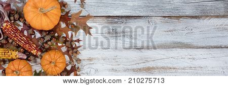 Autumn acorns corn pumpkins and faded leaves in flay lay view on rustic white wood with ample copy space