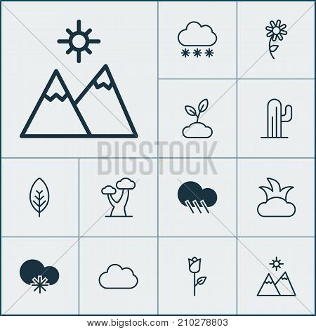 Nature Icons Set. Collection Of Oak, Raindrop, Love Flower And Other Elements