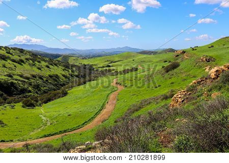 Lone Runner on Trail in California Foothill Landscape