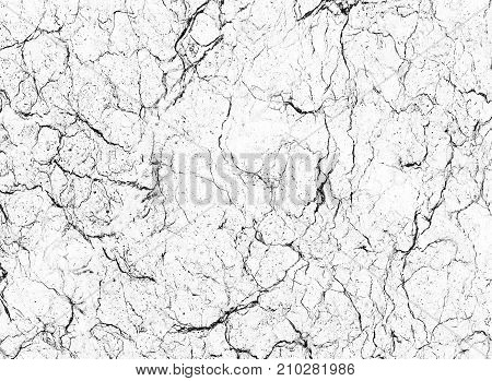 white marble background texture natural stone pattern abstract (with high resolution)