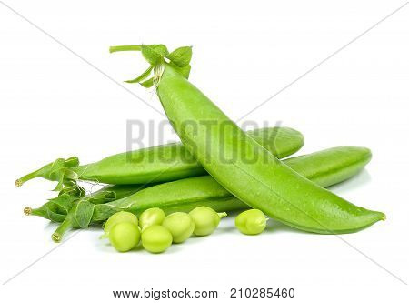 Sweet Pea Isolated On The White Background