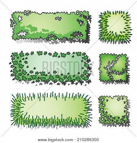 Set of trees and plant . Top view. use in your landscape design.vector illustration