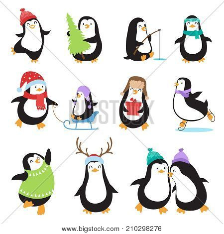 Cute cartoon penguins. Winter holidays vector animals set. Penguin character and xmas mascot bird illustration