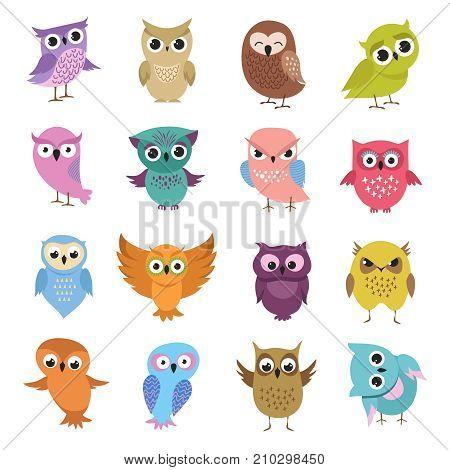 Cute cartoon owls. Funny forest birds vector collection. Owl cartoon set, forest bird character illustration
