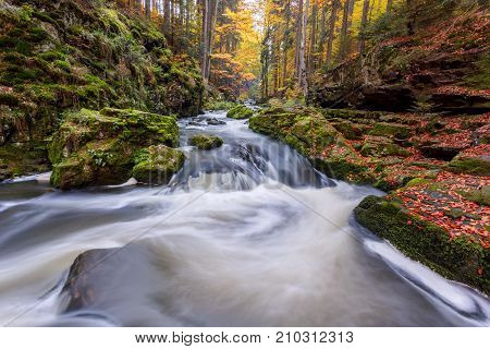 Autumn, Fall Wild River Doubrava, Picturesque Landscape.