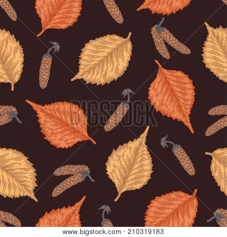 Engraving seamless pattern of birch leaves and seeds. Vintage etching seasonal decor.