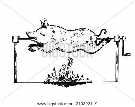 Piggy on spit engraving vector illustration. Scratch board style imitation. Hand drawn image.