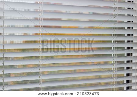 Fragment of the white Venetian blinds on a window and blurred view of the autumn trees across slats of a window blind