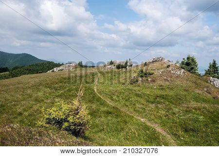 mountain meadow with small isolated trees rocks and hiking trail on Skalky hill in Lucanska Mala Fatra mountains in Slovakia