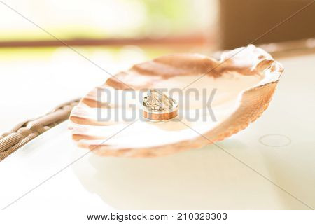 Wedding rings on a clam shell table display