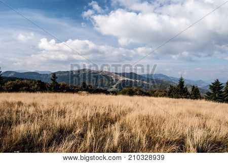autumn mountain meadow on Kecka hill in Starohorske vrchy mountains with Zvolen and other hills of Velka Fatra mountains in Slovakia near Donovaly resort