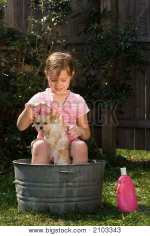 Young girl outside sitting on the edge of an old tin tub washing her Pomeranian puppy. poster