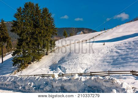 Spruce Trees, Woodshed And Fence On Snowy Slope