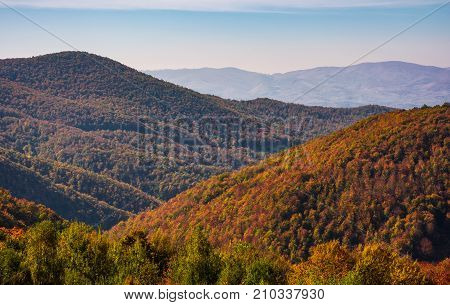 Mountains With Forest In Red Foliage