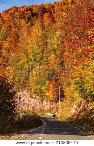 Road Through Forest On A Steep Slope