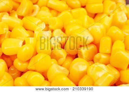 Corn texture. Yellow corns as background. Corn vegetable pattern. Background of bulk of yellow corn grains. Shiny corns.