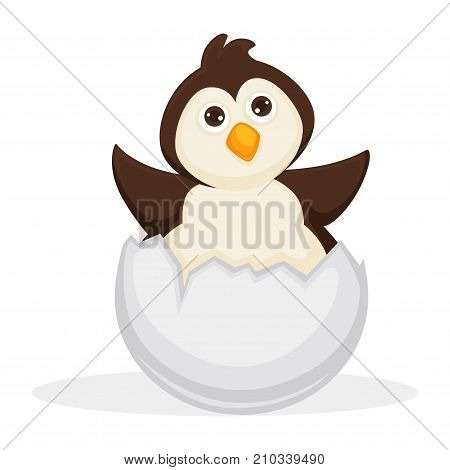 Adorable baby penguin sits in cracked egg shell isolated cartoon flat vector illustration on white background. Cute fluffy soft bird with eyes full of glimmer, yellow sharp beak and small wings.