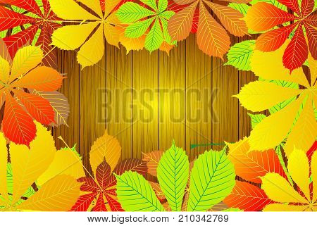 Autumn - Horse chestnut leaves - vector background , Autumnal leaf of buckeye , (Aesculus hippocastanum)