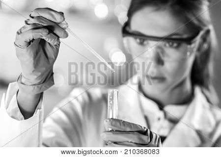 Life scientists researching in laboratory. Focused female life science professional pipetting solution into glass cuvette. Lens focus on pipette. Healthcare and biotechnology. Black and white.