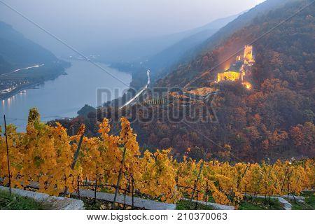 Autumn vineyard against Castle in Spitz with Danube river Wachau Austria