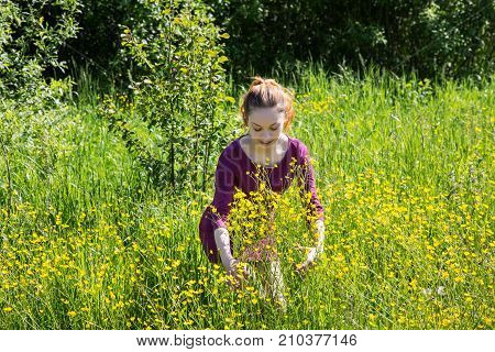Girl Sniffing A Meadow Flower On A Summer Day