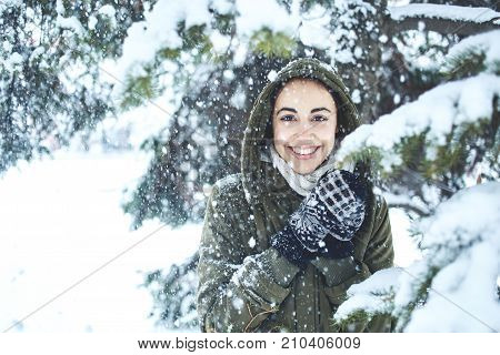 young beautiful brunette woman in a warm jacket with hoodie and warm mittens is walking outdoors in winter. a woman stands under the fir branches with snow and play with them. in the frame there is a flying snow