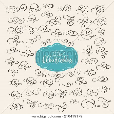 set of Flourish swirl ornate decoration for pointed pen ink calligraphy style. Quill pen flourishes. For calligraphy graphic design, postcard, menu, wedding invitation, romantic style. vector illustration.