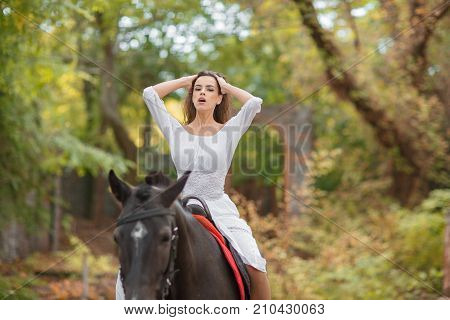 An attractive and sexy lady riding on a black horse on a blurred background. A young aristocrat woman rides a horse People and animals concept. Horseback riding.