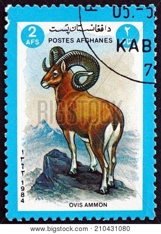 AFGHANISTAN - CIRCA 1984: a stamp printed in Afghanistan shows argali sheep ovis ammon is a wild sheep that roams the highlands of Central Asia circa 1984