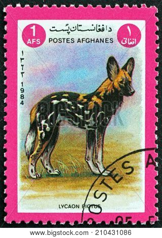 AFGHANISTAN - CIRCA 1984: a stamp printed in Afghanistan shows African Wild Dog Lycaon Pictus Animal circa 1984