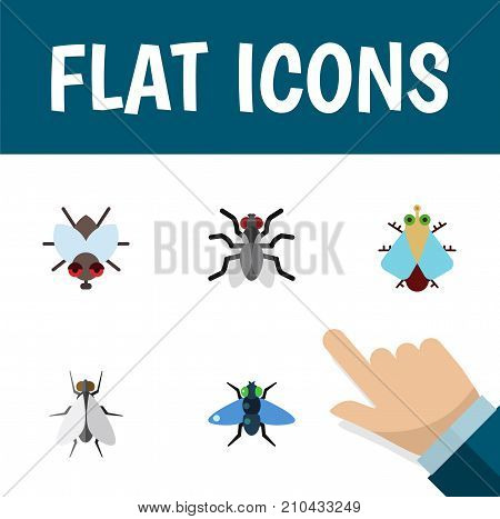 Flat Icon Housefly Set Of Tiny, Buzz, Gnat And Other Vector Objects poster