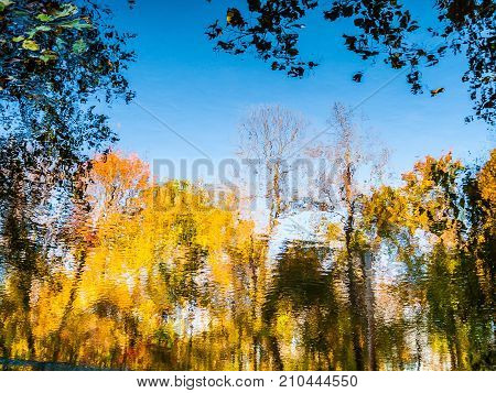 Colorful abstract Fall colors on this pond in Upper Freehold New Jersey.