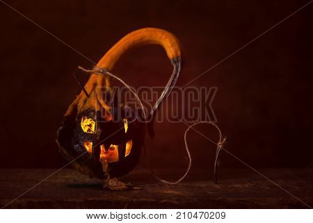 Rotten mutant jack o lantern made from winged gourd pumpkin, which has spikes and wings. Spewing rotten pumpkin. black color on bottom half is its natural color. Tied down with rope and nails.